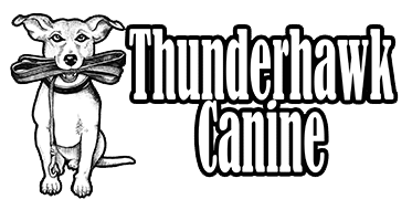 ThunderHawk Canine LLC | Dog Training, Boarding, and Playcare